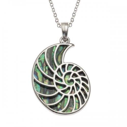 Ammonite Fossil Paua Abalone Shell Pendant Necklace